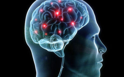"""The """"Mental"""" Game; How to Train Your Brain for Success"""